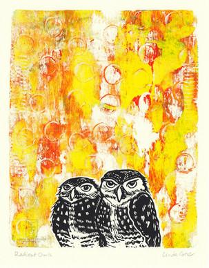 LINDA COTE-Burrowing Owls Gelli Art
