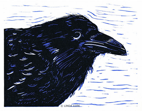 Young Raven