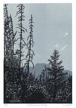 On Fenland Trail, Banff