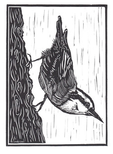 LINDA COTE-Little Nuthatch Linocut