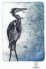 LINDA COTE-Ancient Heron 2 Mixed Media