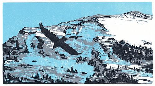 Grotto Glide