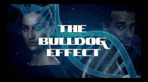 Avaah_Blackwell_Bull_Dog_effect_Title_pa