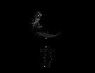 Moonchild Crafts SF Black
