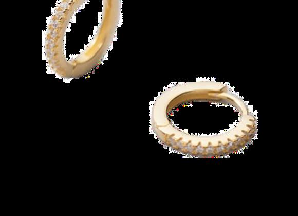 zirconia hoops - 14k gold plated