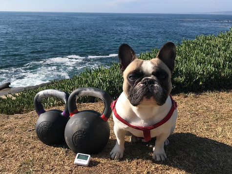 Essential Guide to Kettlebells