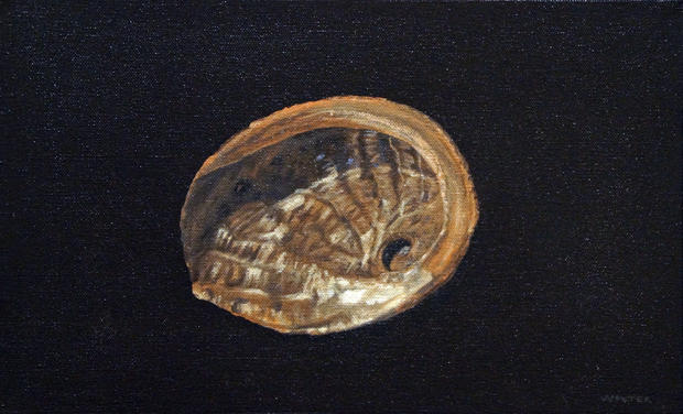 Vessel of verity (abalone shell)
