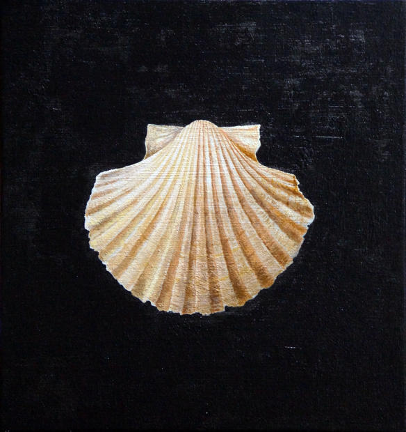 The keeper of secrets (scallop shell)