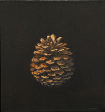 Recurrence (pinecone study)