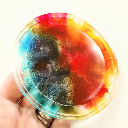 Alcohol Ink Colorful Resin Coaster