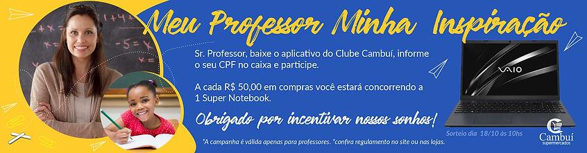 dia professor banner web.jpg