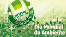 Pensado verde e sustentável