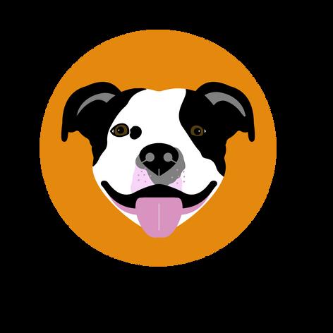 CASEY DOG