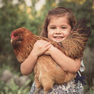 Portland Pet Photographer Backyard Chickens