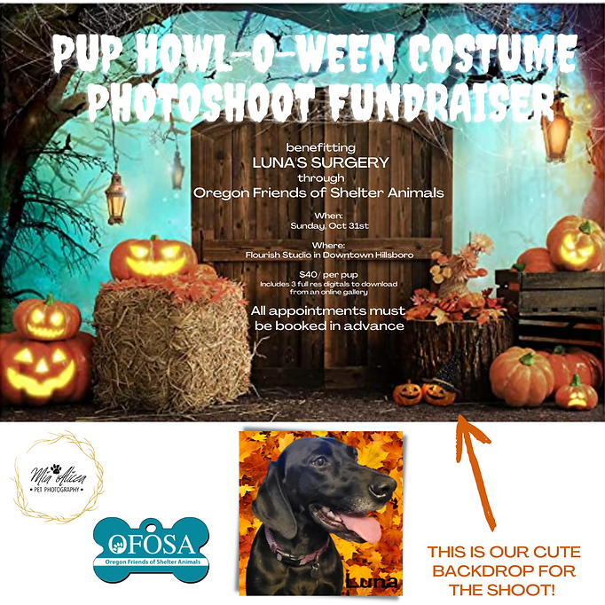 PET Halloween COSTUME PHOTOSHOOT AND FUNDRAISER.png
