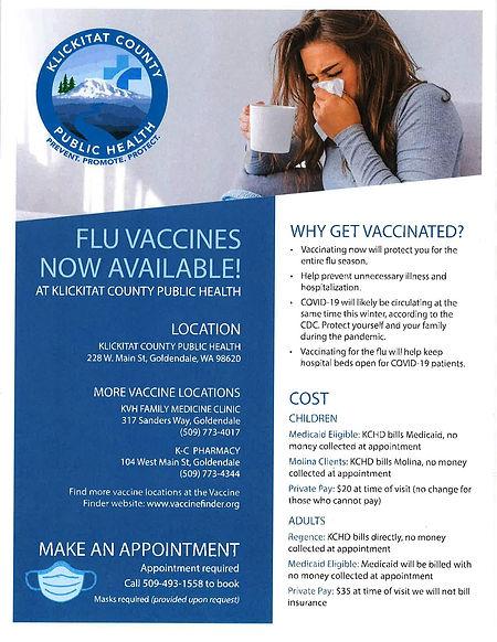 Flu Vaccine Flyer GD-page-001.jpg