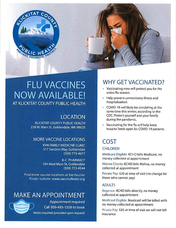 Flu Vaccine Flyer GD-page-001.jpg
