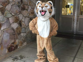 Bobby the Bobcat On First Day of School