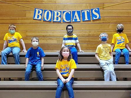 Bobcat colors (2).jpg