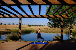 Yoga at the Pond