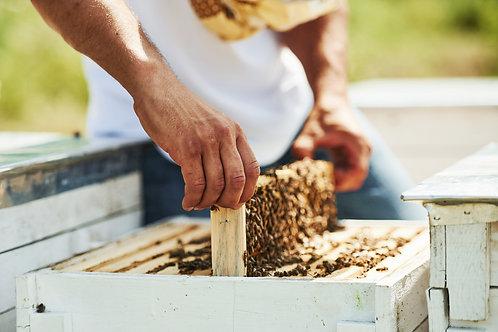 Odkłady pszczele 5 ramek wielkopolskich