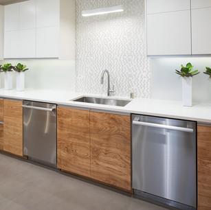 Lower level kitchen 4.jpg