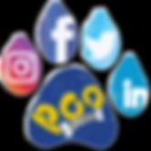 Poo Patro Social Media