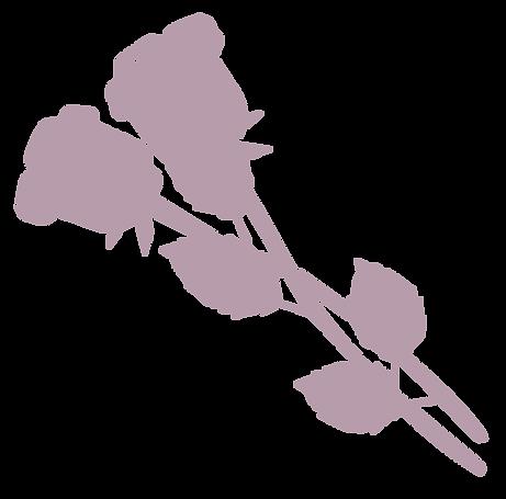 FWEB-roses.png