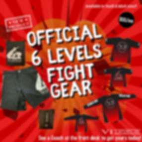 fight gear.jpg