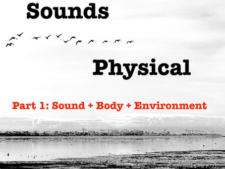 Why now?   'Sounds Physical' a course for conscious dance teachers and movement therapists.