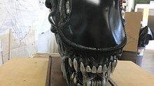 Xenomorph Head Display for Comic Con