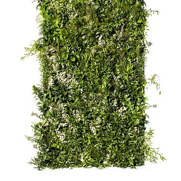 Biombo de Verdura Natural