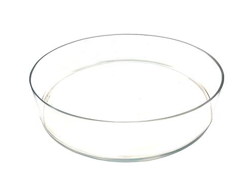Taça de vidro 21