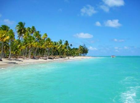 MARAGOGI -O Caribe brasileiro