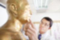 נקודות דיקור | מלכיאלי - רפוא סינית