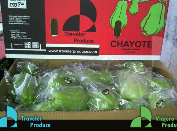 Chayote-Actopan-Veracruz-retailer-Primus
