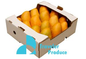 Mango-retailers-ataulfo-Mexico-United-St