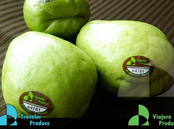 Mexican-Chayote-certified-Primus-GFS-goo