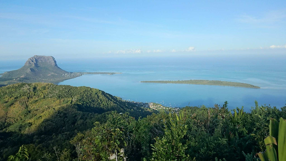 Le Morne seen from Piton Canot (Chamarel)