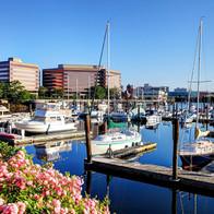 Stamford, CT