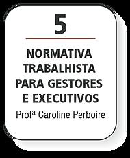 MODULOS PFDG-23.png
