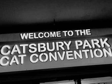 Catsbury Park Cat Convention - Unique visit to Asbury Park, NJ