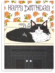 MEET MAX_TUXEDO CAT IN SINK_BIRTHDAY CAR