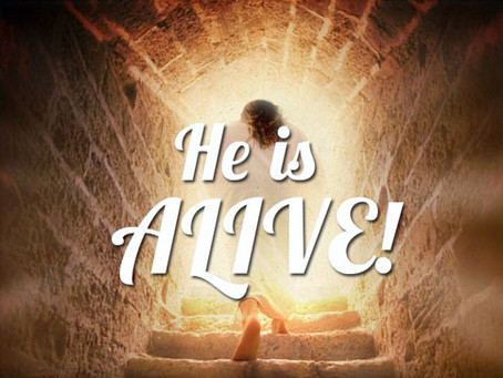 REJOICE – OUR SAVIOUR IS WITH US…..