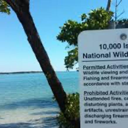 Cruise - Panther Key,  Ten Thousand Islands