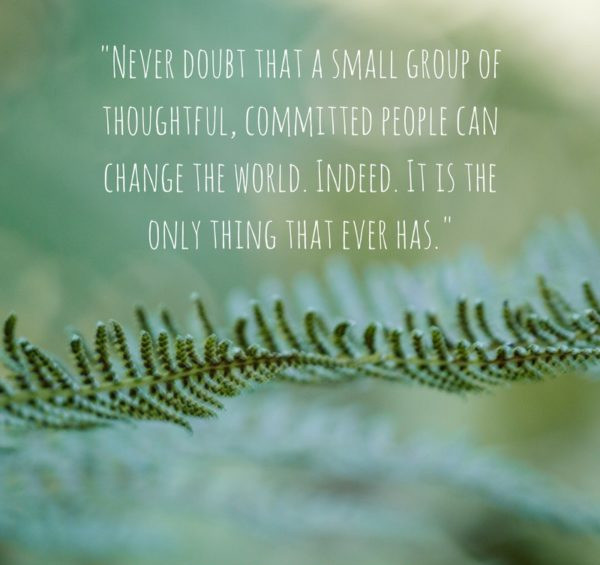 What are you seeding to change the world?