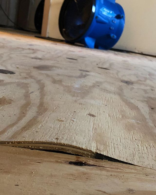 Subfloor is buckled after a broken pipe