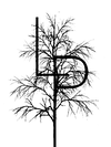 LogoBig%202_edited.png