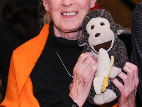 10 Inspiring New Year's Resolutions From My Conversations With Jane Goodall