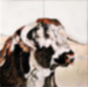 Hand painted country tiles Prize Long Horn Bull